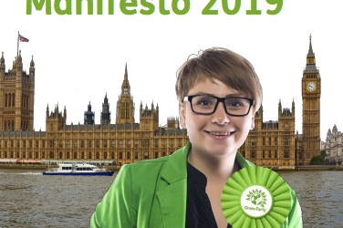 Green Party Manifesto Nov 2019 (Easy Read)